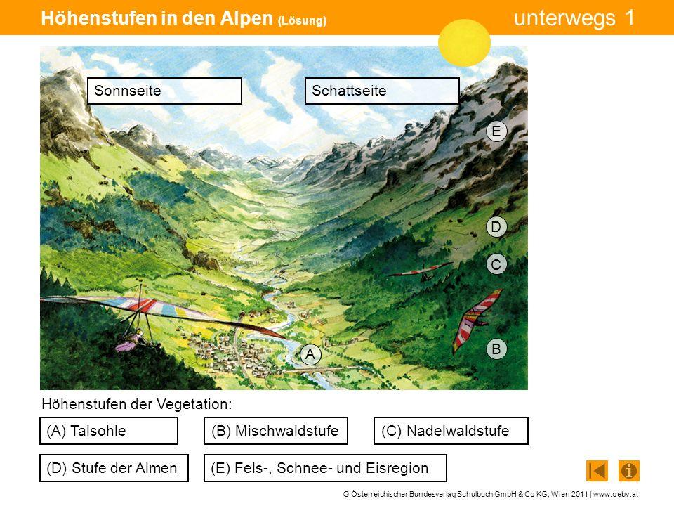 Höhenstufen in den Alpen (Lösung)