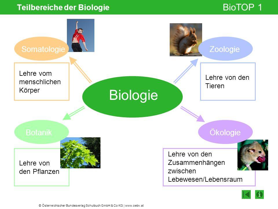 Teilbereiche der Biologie