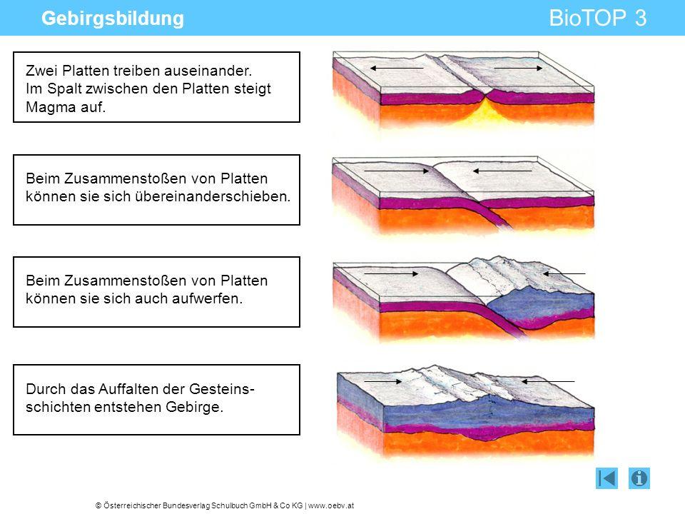 Gebirgsbildung Zwei Platten treiben auseinander. Im Spalt zwischen den Platten steigt Magma auf.
