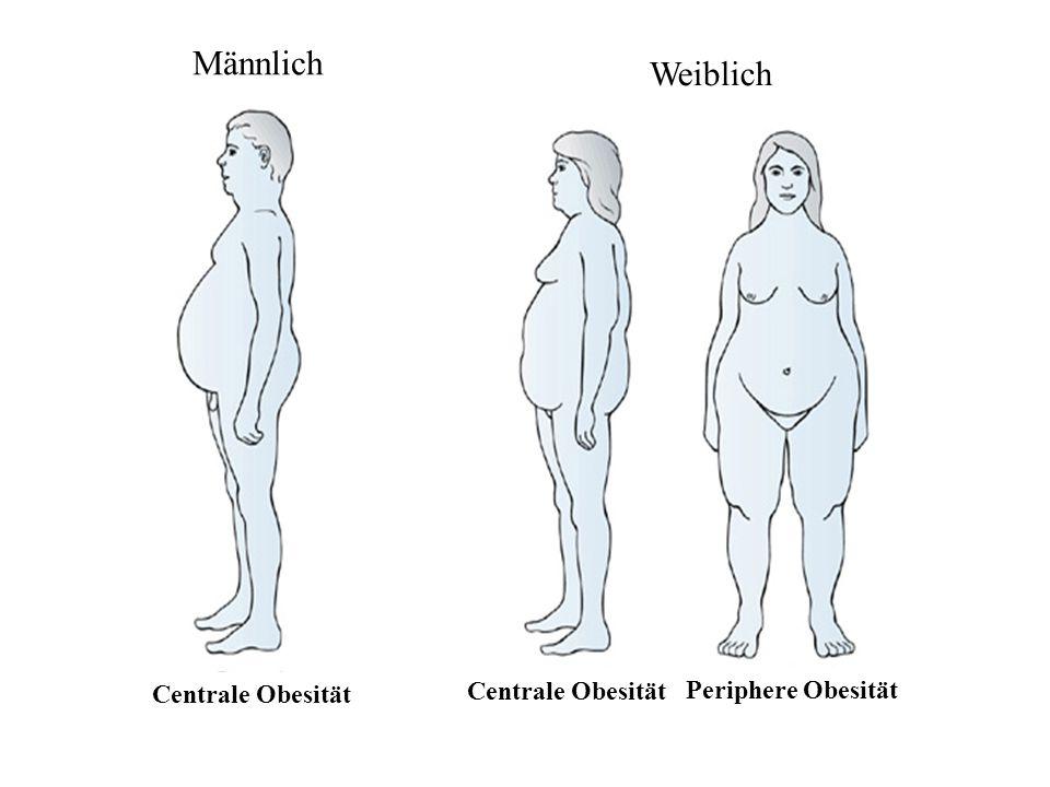 Männlich Weiblich Centrale Obesität Centrale Obesität