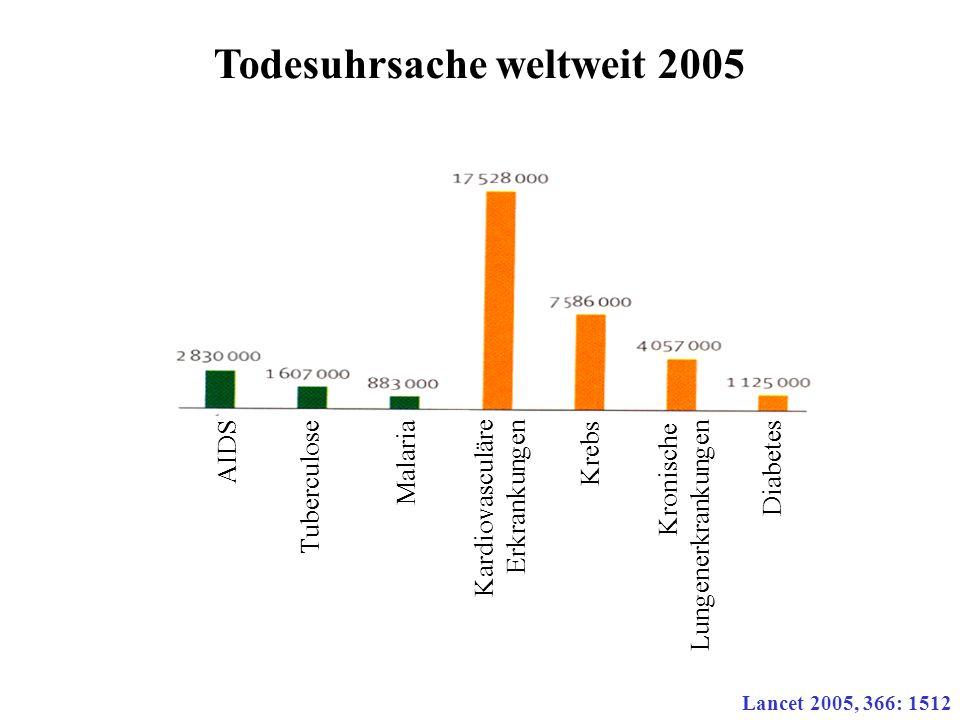 Todesuhrsache weltweit 2005