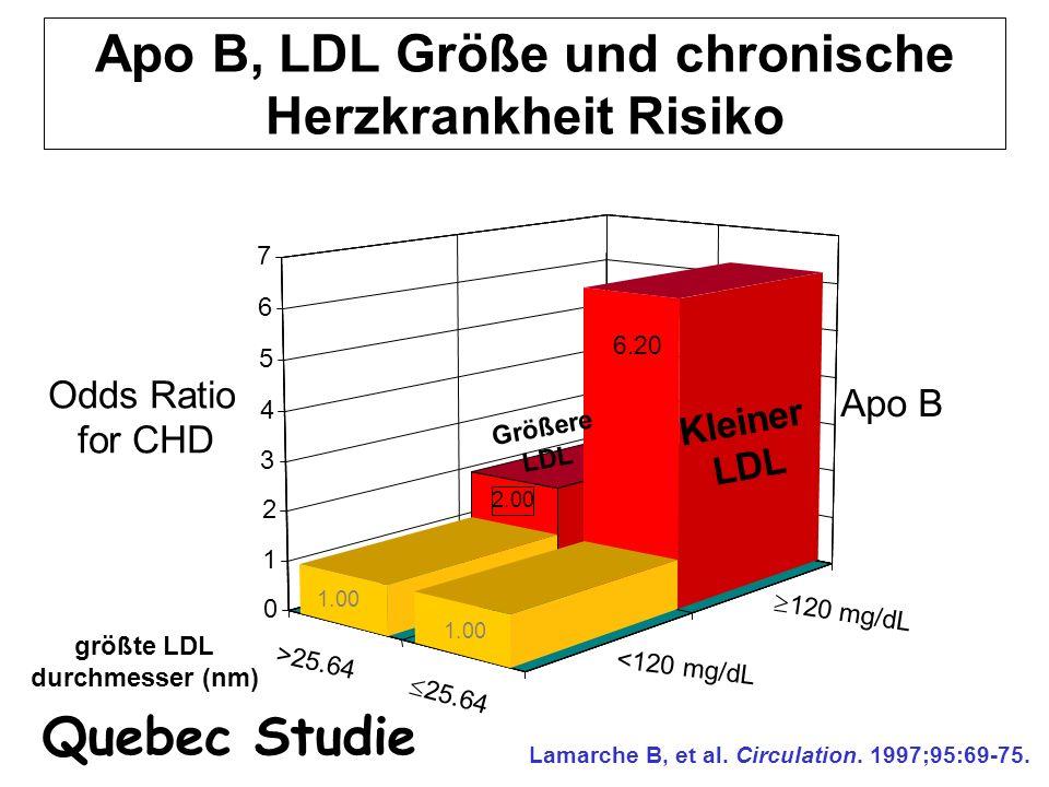 Apo B, LDL Größe und chronische Herzkrankheit Risiko