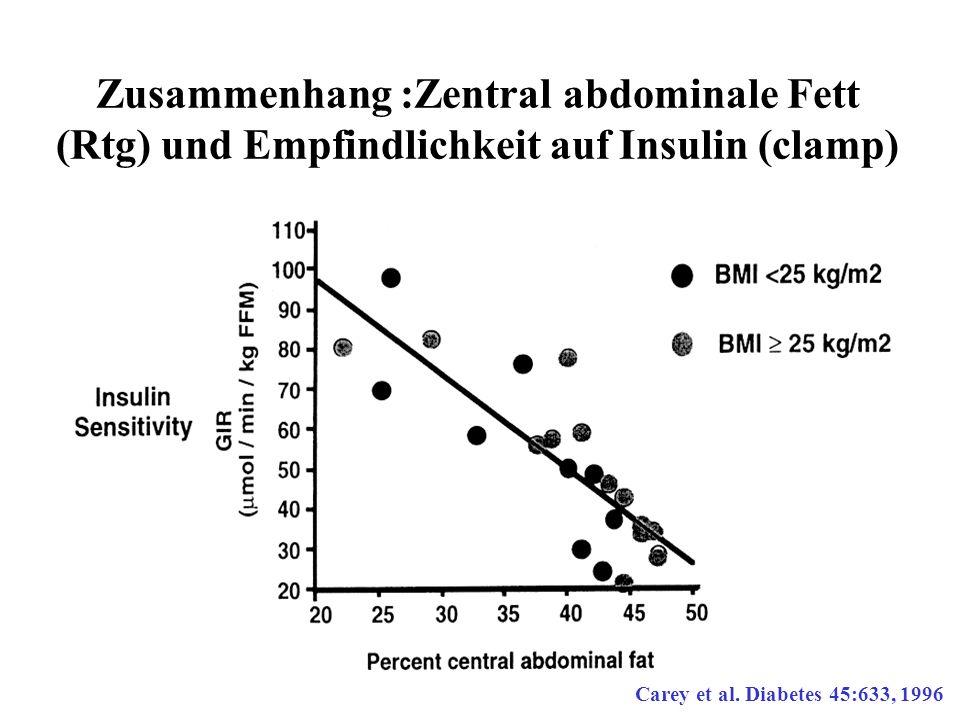Zusammenhang :Zentral abdominale Fett (Rtg) und Empfindlichkeit auf Insulin (clamp)
