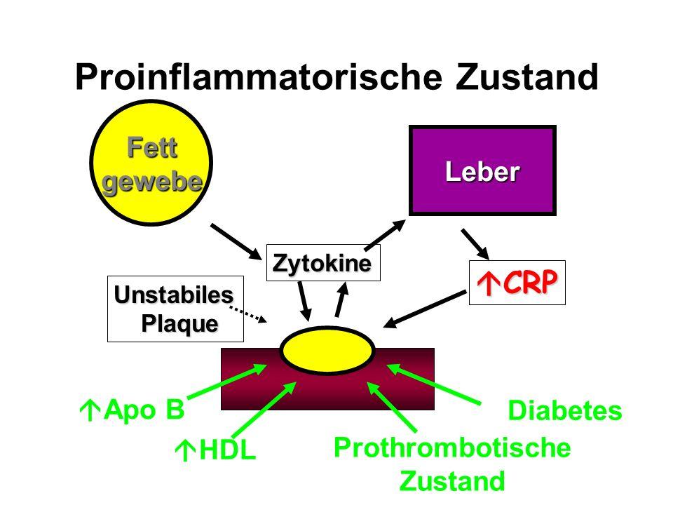 Proinflammatorische Zustand