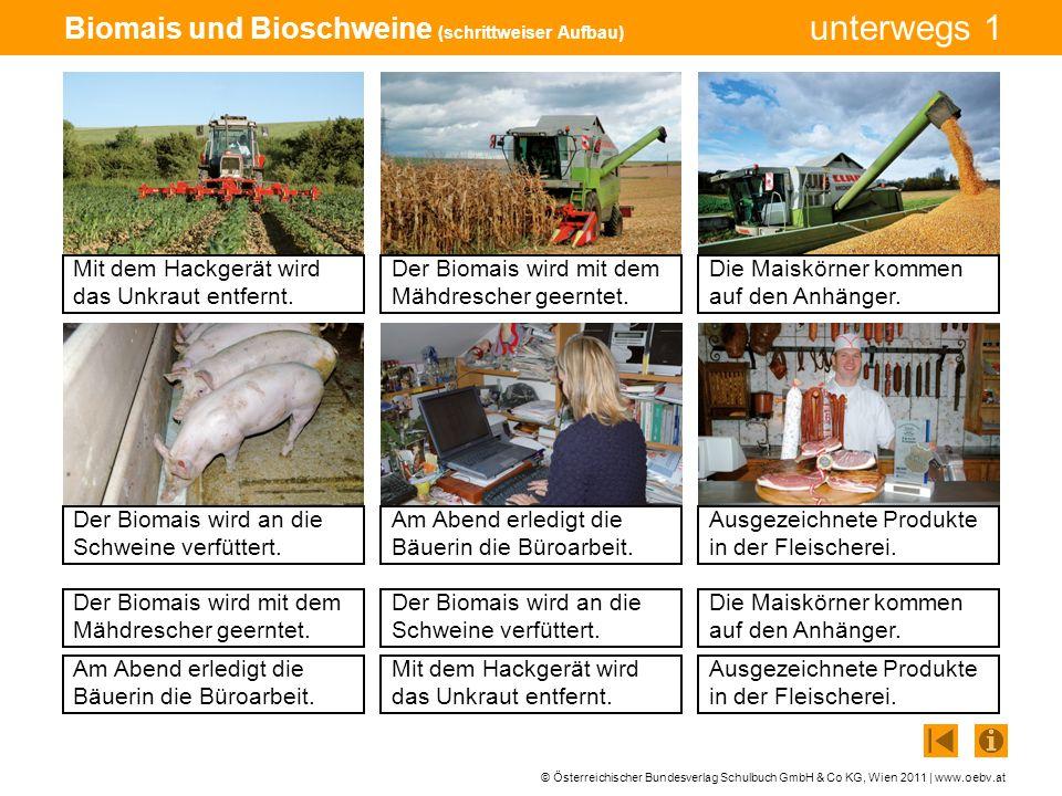 Biomais und Bioschweine (schrittweiser Aufbau)
