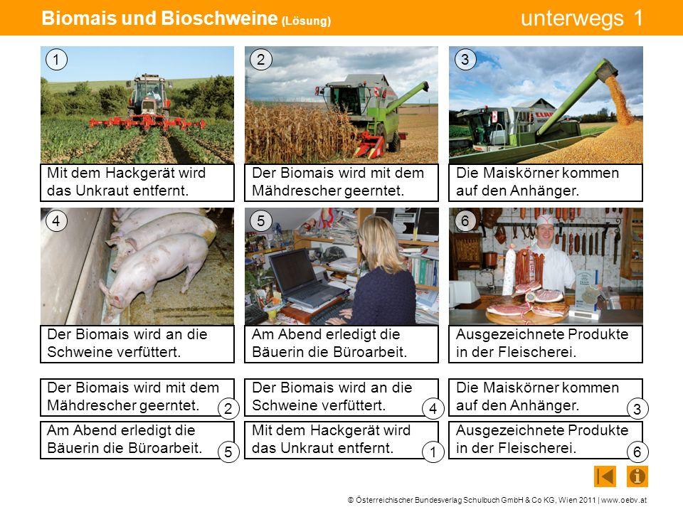 Biomais und Bioschweine (Lösung)
