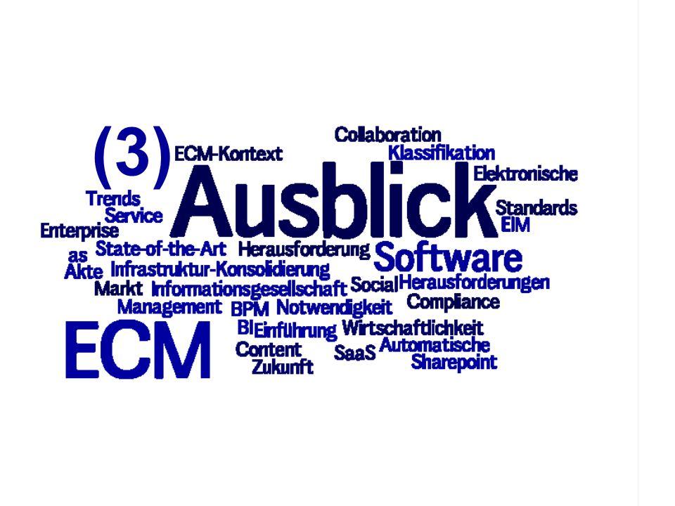 (3) PROJECT CONSULT Unternehmensberatung ECM Trends 2010 COI GmbH