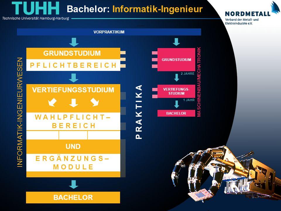 Bachelor: Informatik-Ingenieurwesen (19)