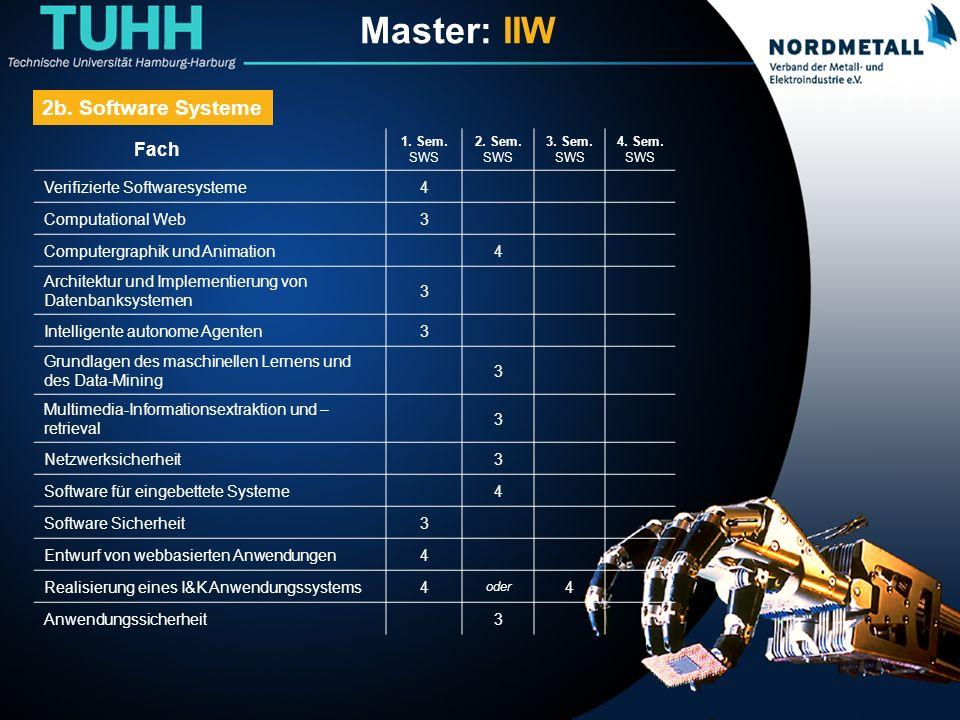 Master: Informatik-Ingenieurwesen (13)