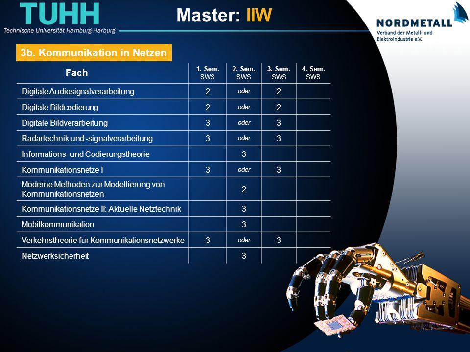 Master: Informatik-Ingenieurwesen (19)