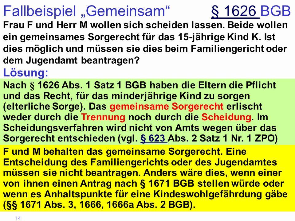 """Fallbeispiel """"Gemeinsam § 1626 BGB"""