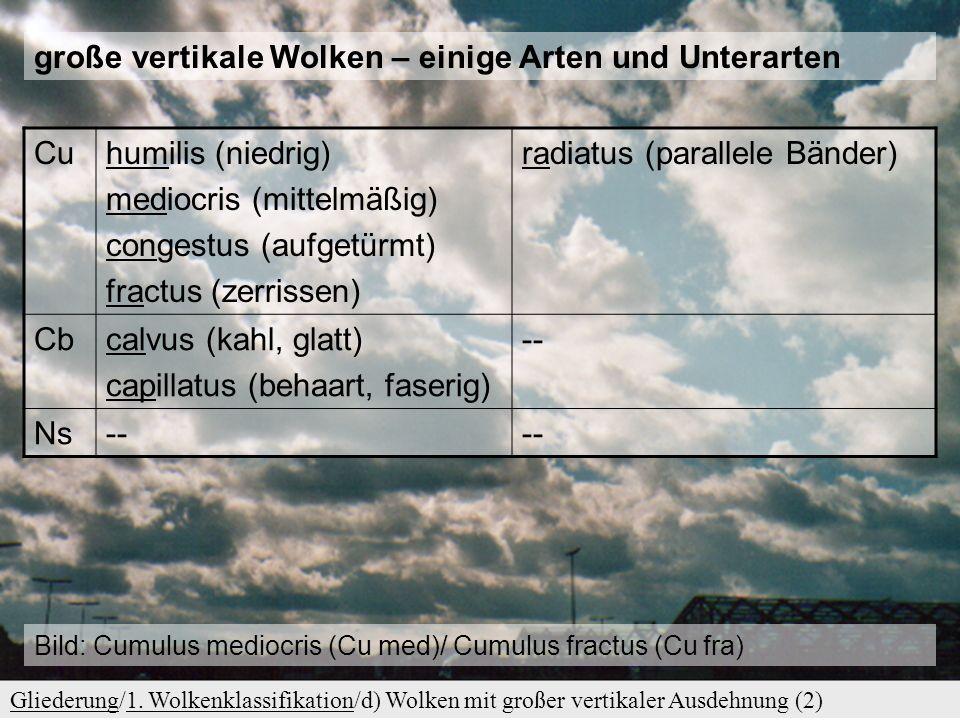 große vertikale Wolken – einige Arten und Unterarten Cu