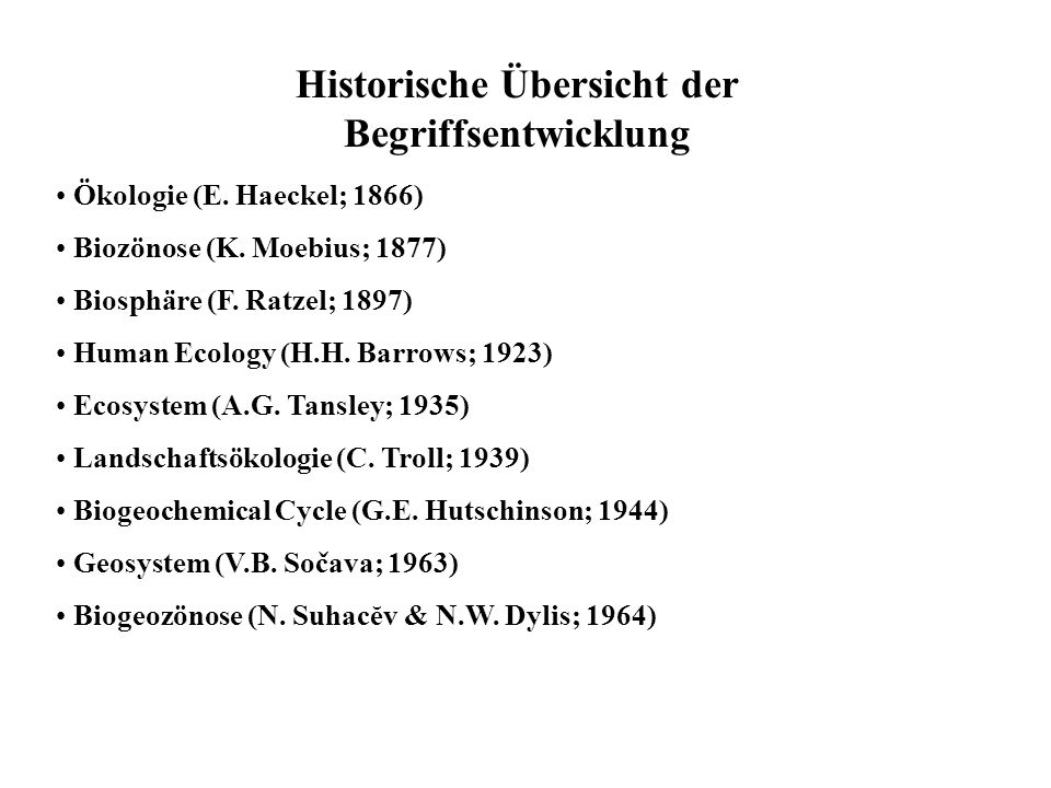 Historische Übersicht der Begriffsentwicklung
