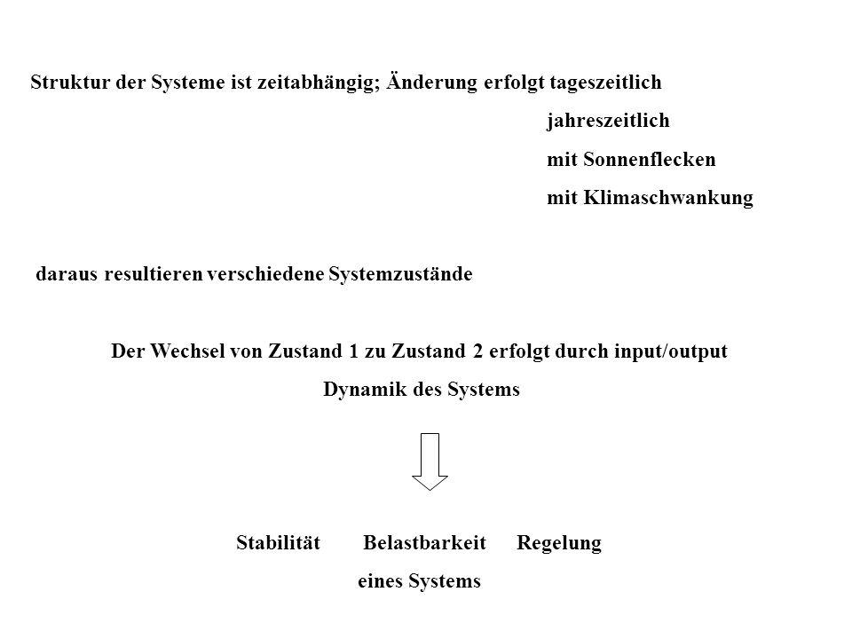 Struktur der Systeme ist zeitabhängig; Änderung erfolgt tageszeitlich