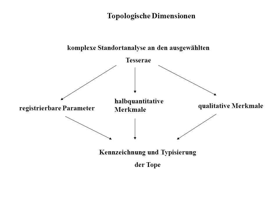 Topologische Dimensionen