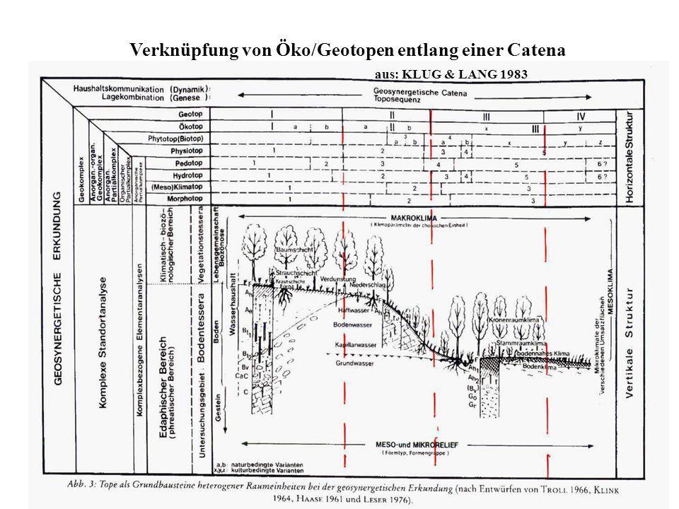 Verknüpfung von Öko/Geotopen entlang einer Catena