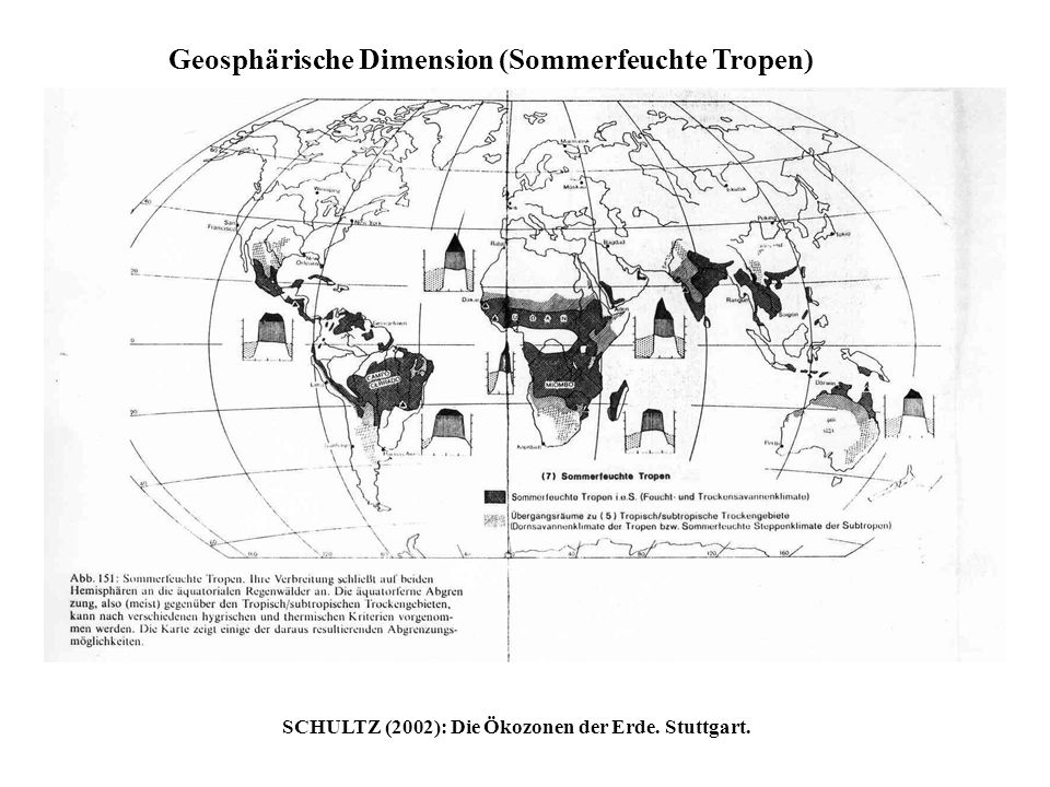 Geosphärische Dimension (Sommerfeuchte Tropen)