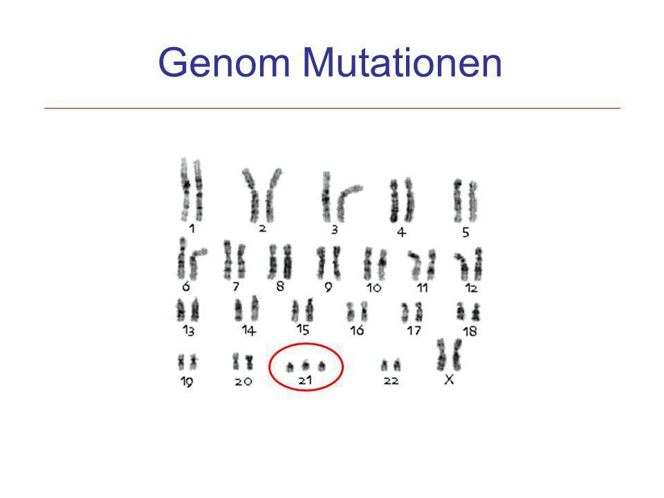 Genom Mutationen