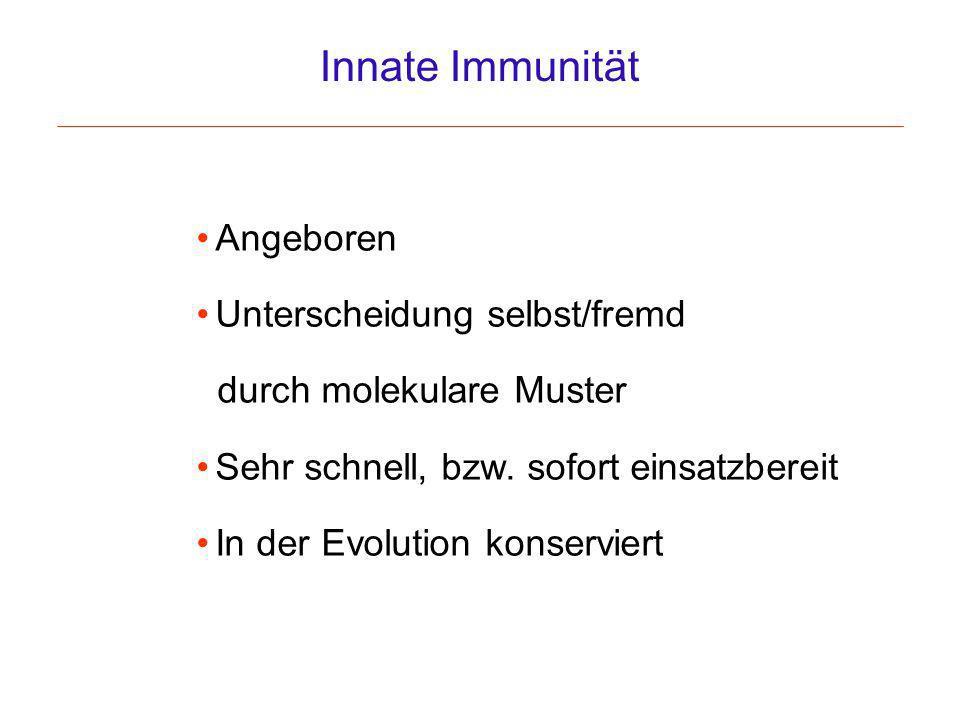 Innate Immunität Angeboren Unterscheidung selbst/fremd