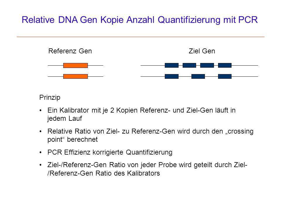 Relative DNA Gen Kopie Anzahl Quantifizierung mit PCR