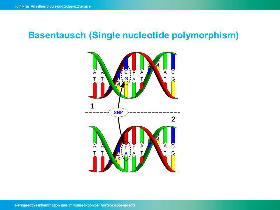 Basentausch (Single nucleotide polymorphism)