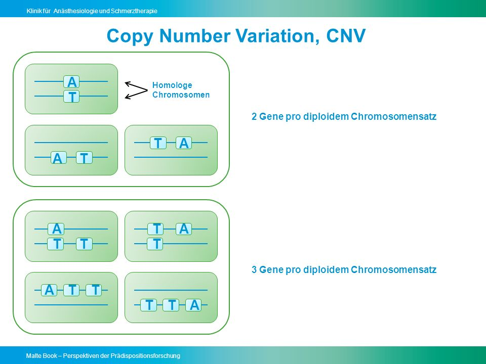 Copy Number Variation, CNV