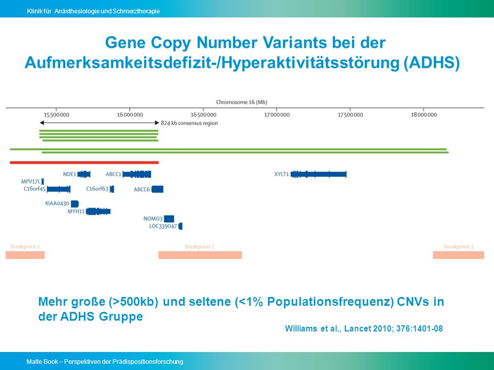 Gene Copy Number Variants bei der