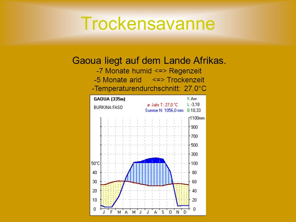 Trockensavanne Gaoua liegt auf dem Lande Afrikas.