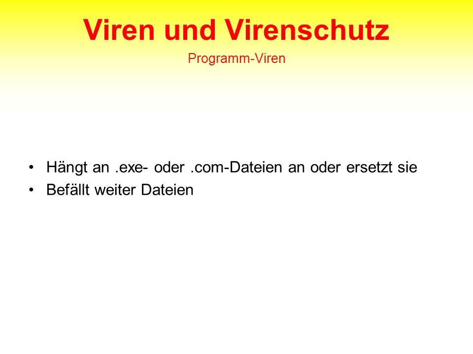 Viren und Virenschutz Programm-Viren