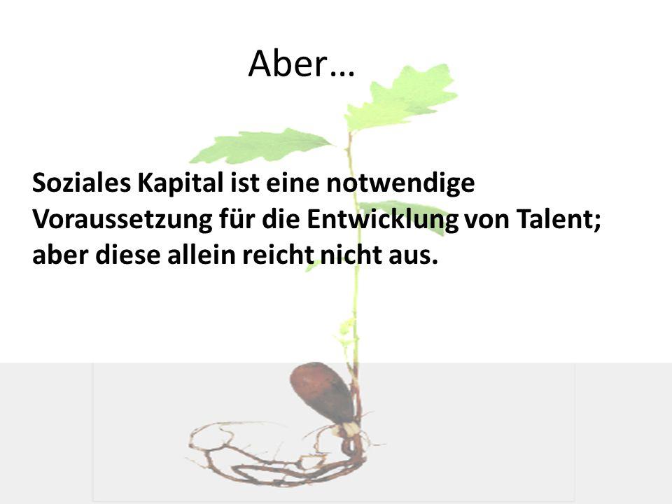 Aber… Soziales Kapital ist eine notwendige Voraussetzung für die Entwicklung von Talent; aber diese allein reicht nicht aus.