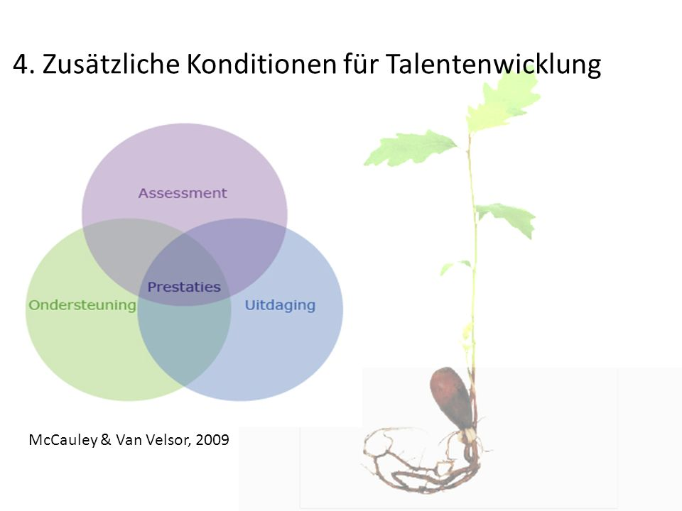 4. Zusätzliche Konditionen für Talentenwicklung