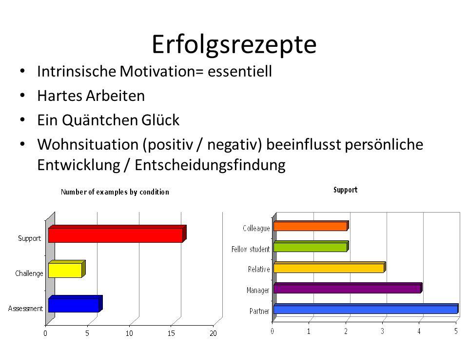 Erfolgsrezepte Intrinsische Motivation= essentiell Hartes Arbeiten