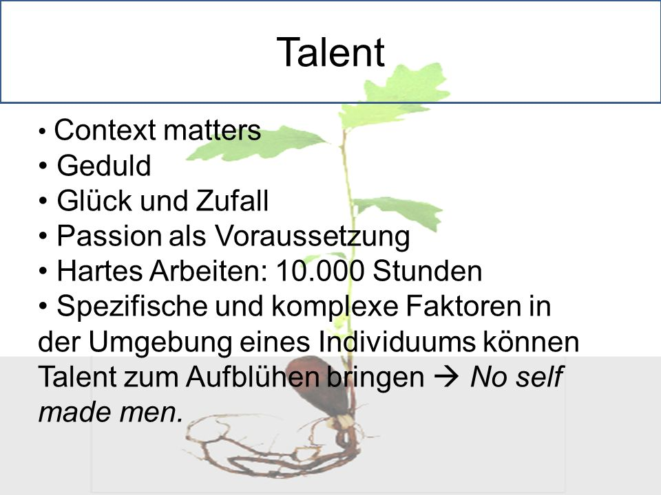 Talent Geduld Glück und Zufall Passion als Voraussetzung
