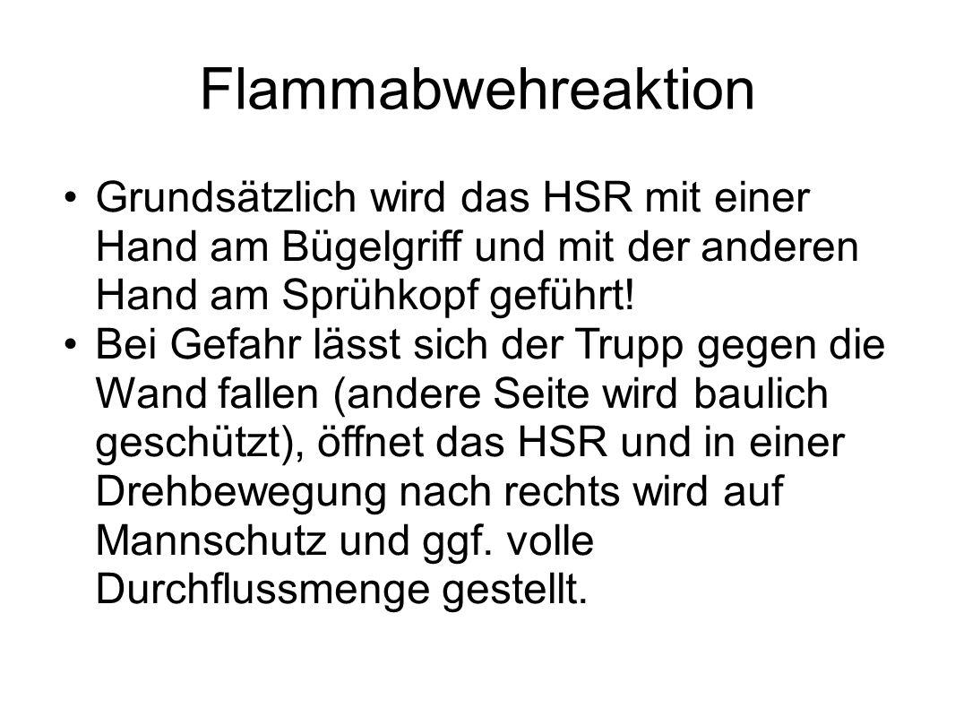 FlammabwehreaktionGrundsätzlich wird das HSR mit einer Hand am Bügelgriff und mit der anderen Hand am Sprühkopf geführt!