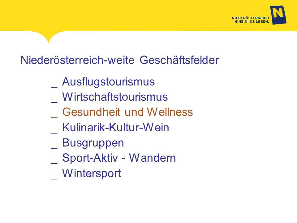 Niederösterreich-weite Geschäftsfelder