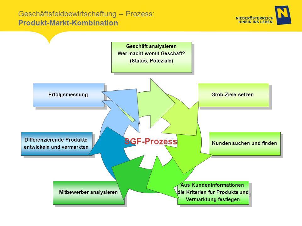 Geschäftsfeldbewirtschaftung – Prozess: Produkt-Markt-Kombination