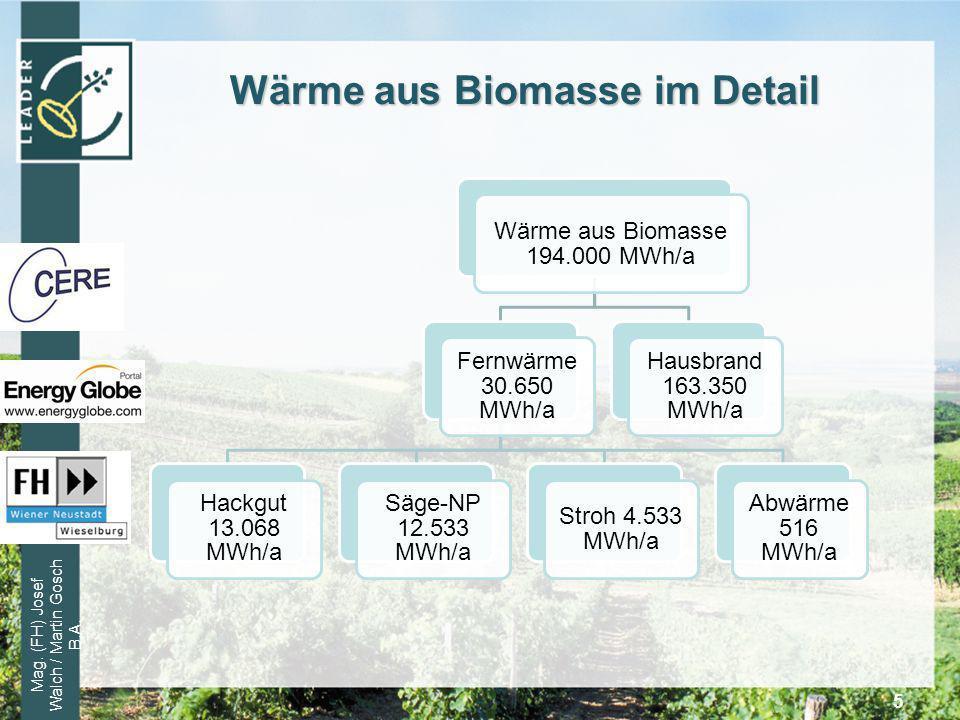 Wärme aus Biomasse im Detail