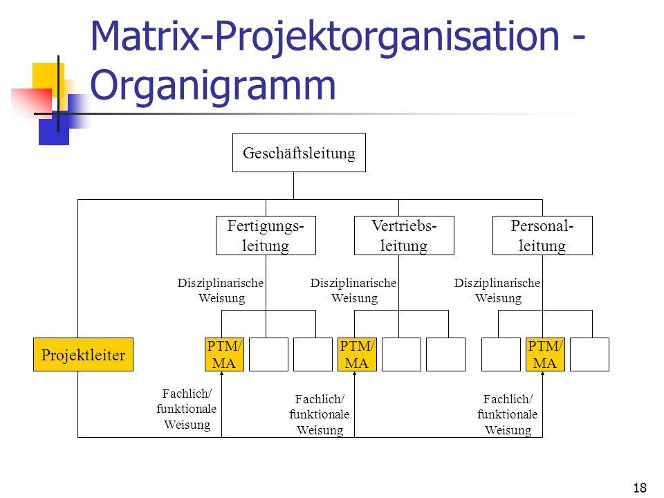 Matrix-Projektorganisation - Organigramm
