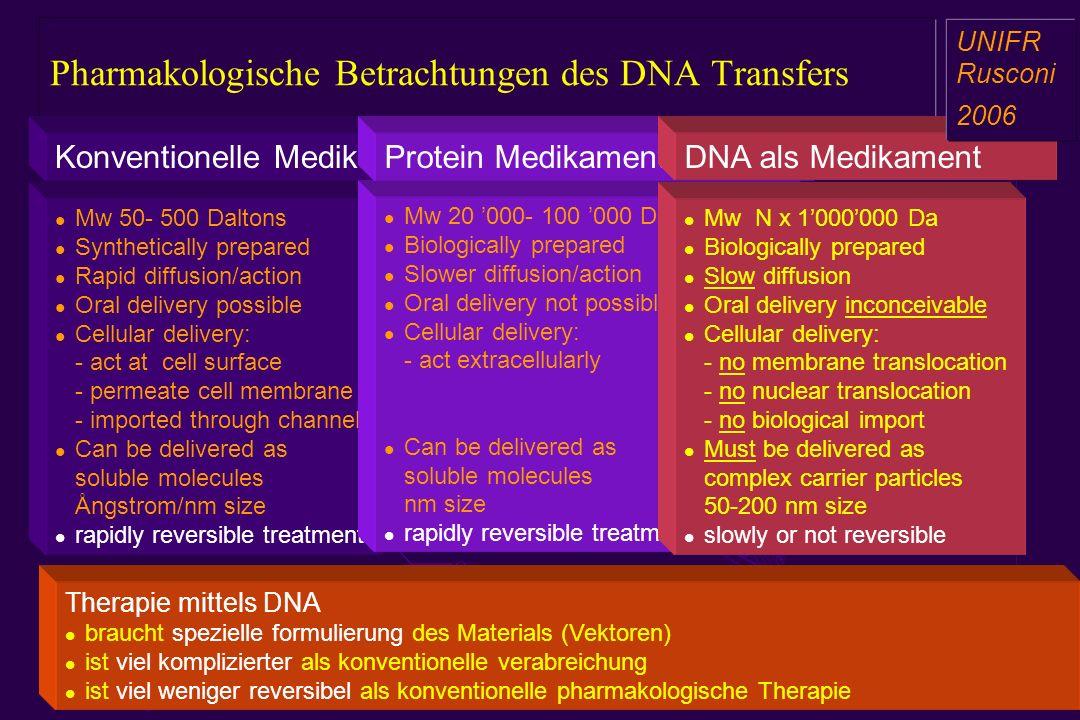 Pharmakologische Betrachtungen des DNA Transfers