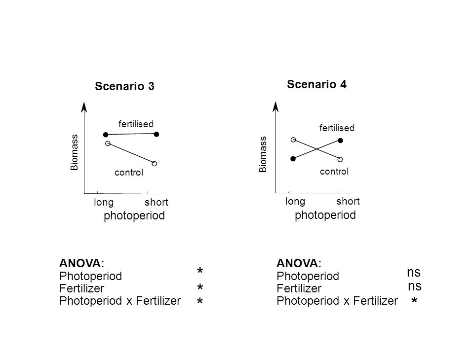 * * ns Scenario 3 photoperiod ANOVA: Photoperiod Fertilizer