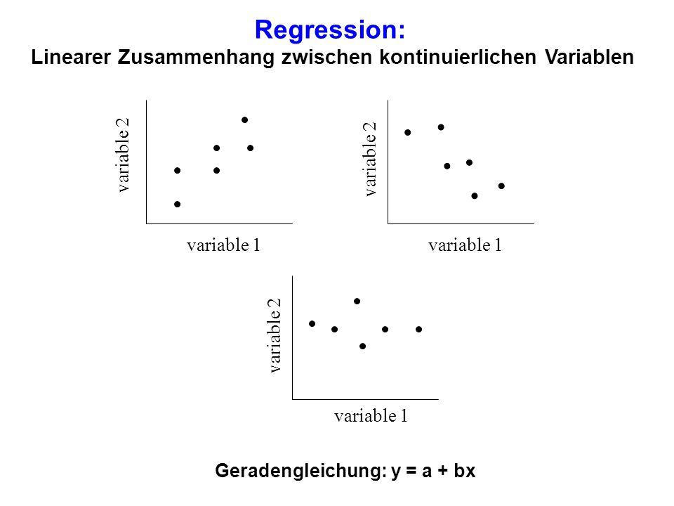 Linearer Zusammenhang zwischen kontinuierlichen Variablen