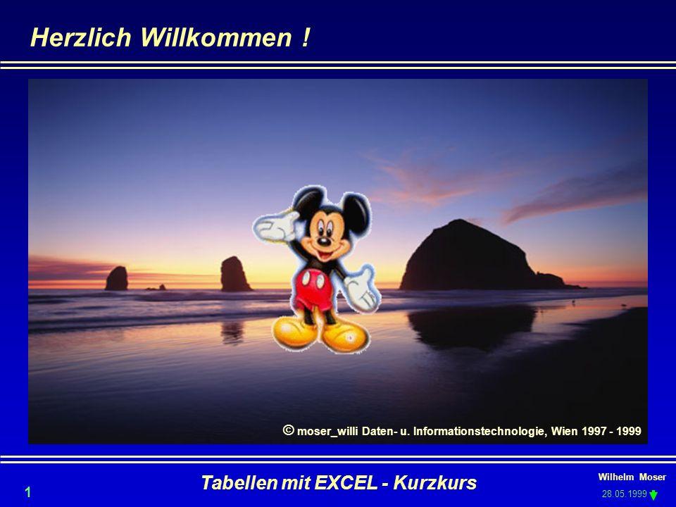 © moser_willi Daten- u. Informationstechnologie, Wien 1997 - 1999