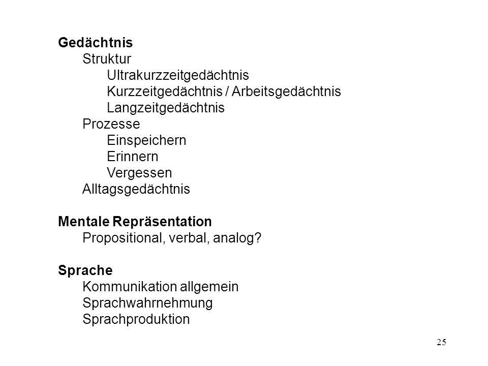 GedächtnisStruktur. Ultrakurzzeitgedächtnis. Kurzzeitgedächtnis / Arbeitsgedächtnis. Langzeitgedächtnis.