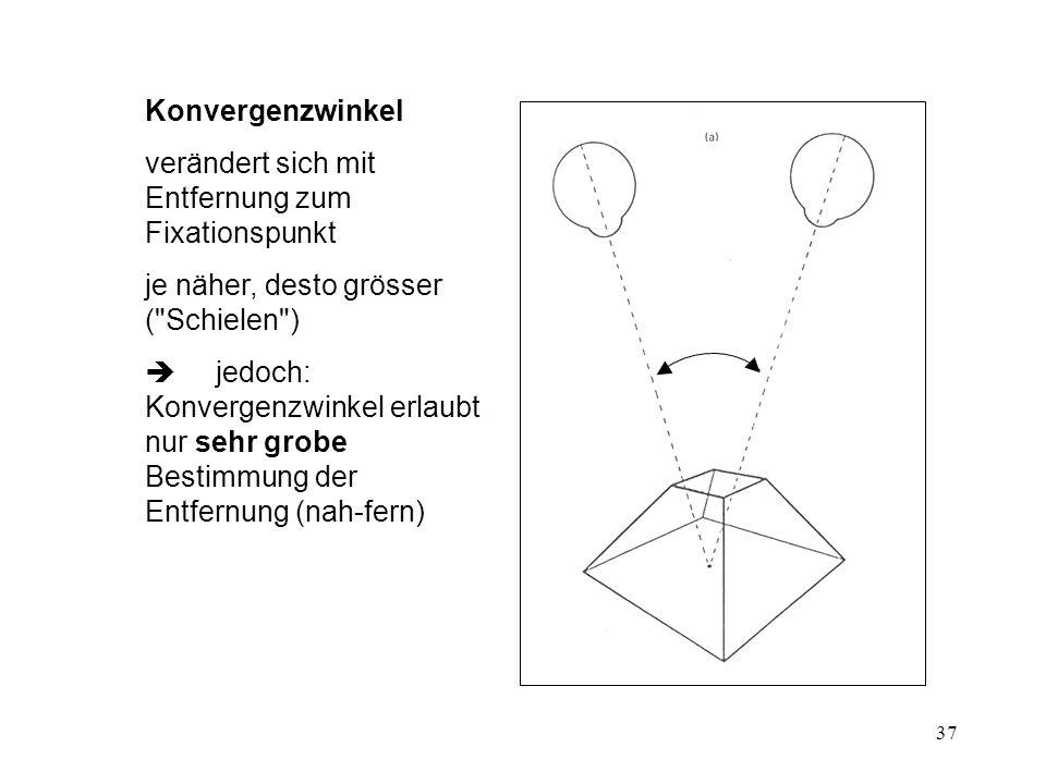 Konvergenzwinkel verändert sich mit Entfernung zum Fixationspunkt. je näher, desto grösser ( Schielen )