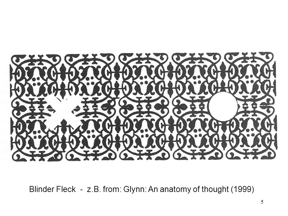 Blinder Fleck - z.B. from: Glynn: An anatomy of thought (1999)