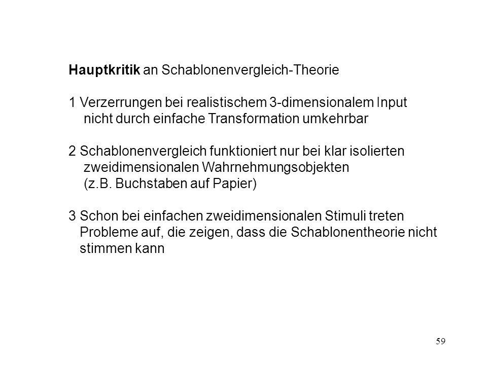 Hauptkritik an Schablonenvergleich-Theorie