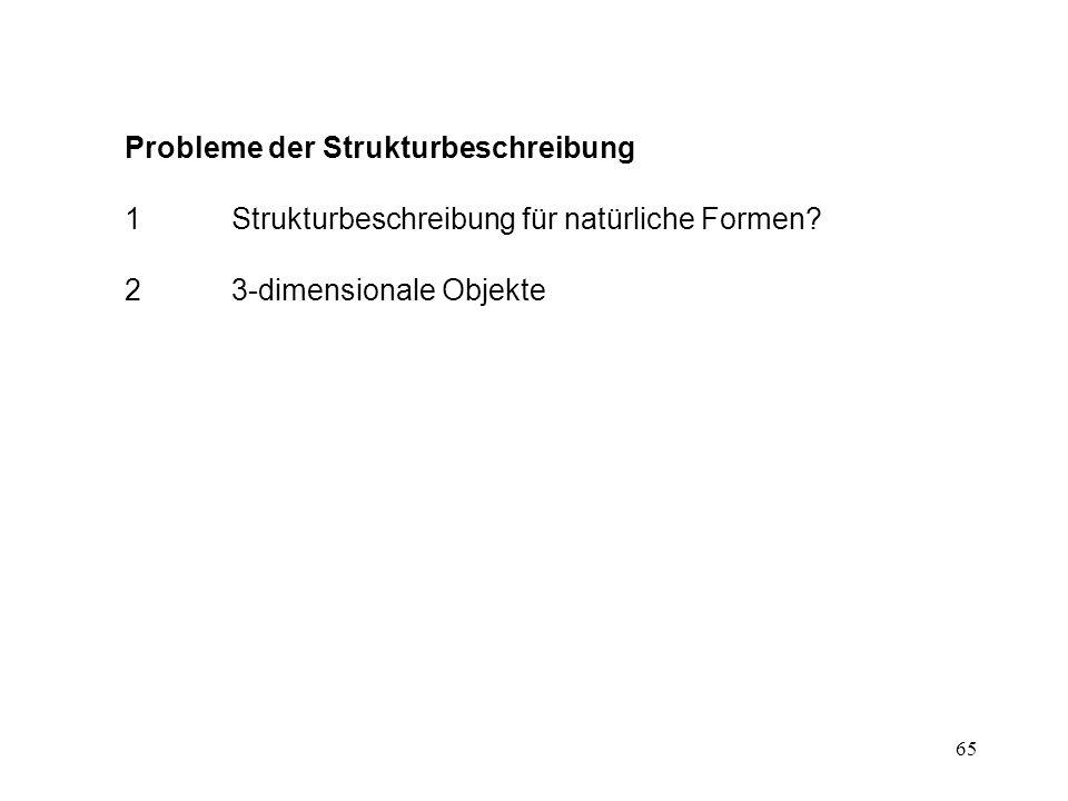 Probleme der Strukturbeschreibung