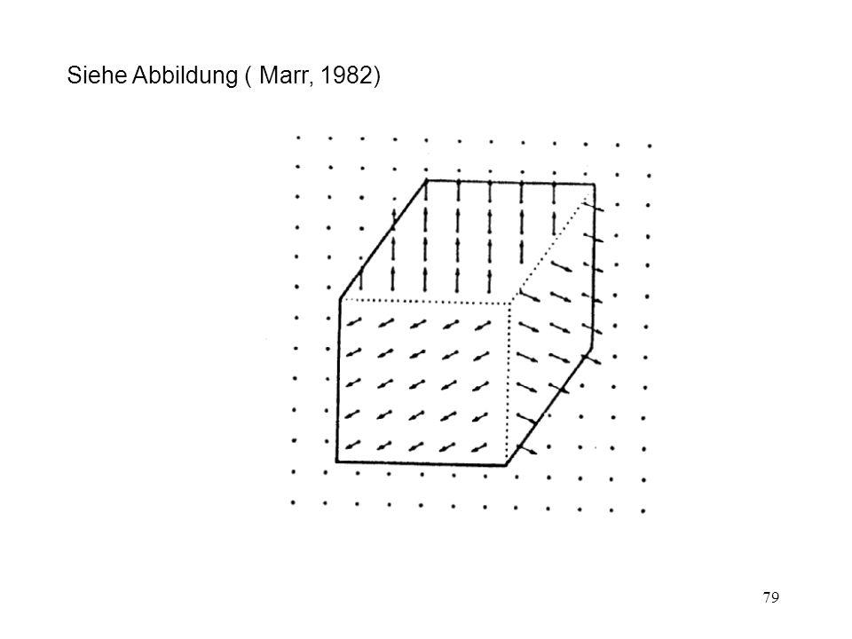 Siehe Abbildung ( Marr, 1982)