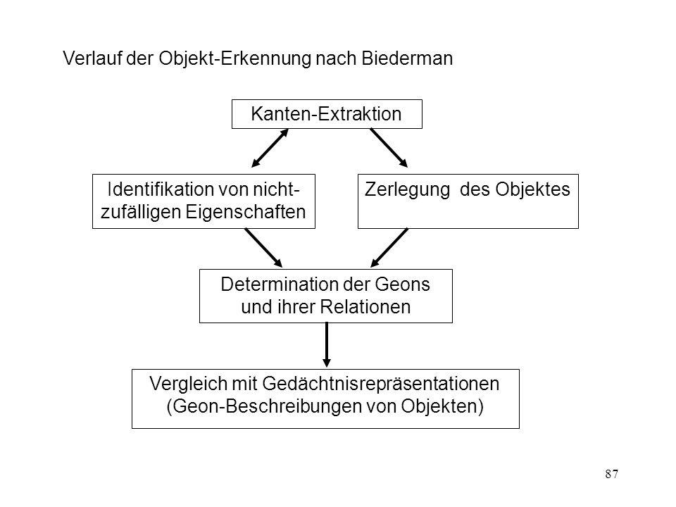 Verlauf der Objekt-Erkennung nach Biederman