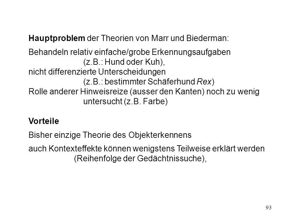 Hauptproblem der Theorien von Marr und Biederman: